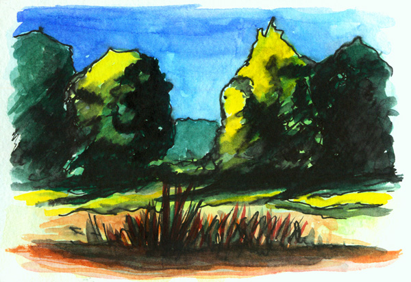 Bäume am Kapuzinerhölzl