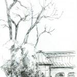 Impression mit Bäumen in Innenhof des Bayerischen Nationalmuseums