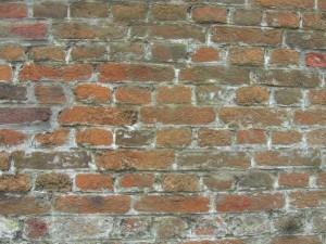Mauerbild4